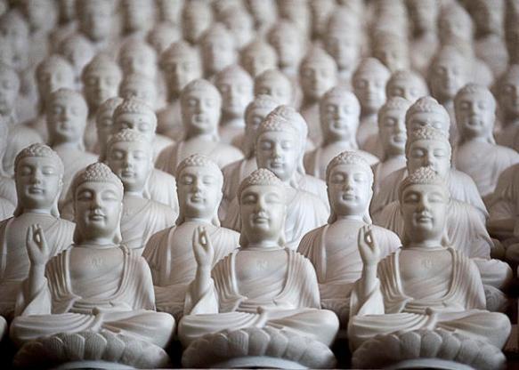 ten-thousand-buddhas-patricia-bolgosano